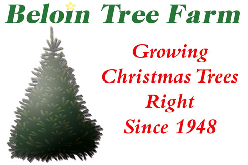 Beloin Tree Farm